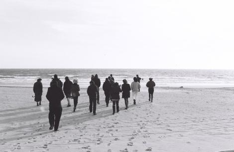 Freaks on a Beach