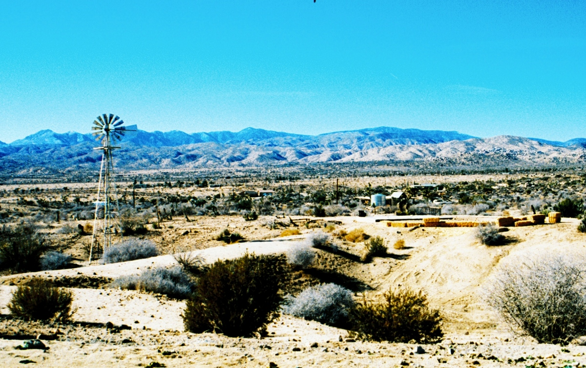 The View from the Sacred Bones Rented Ranch in Yucca Valley, CA.
