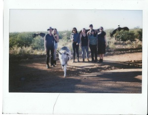 Wild crew with a wild donkey that acted like a cat in the Dragoon mountains.