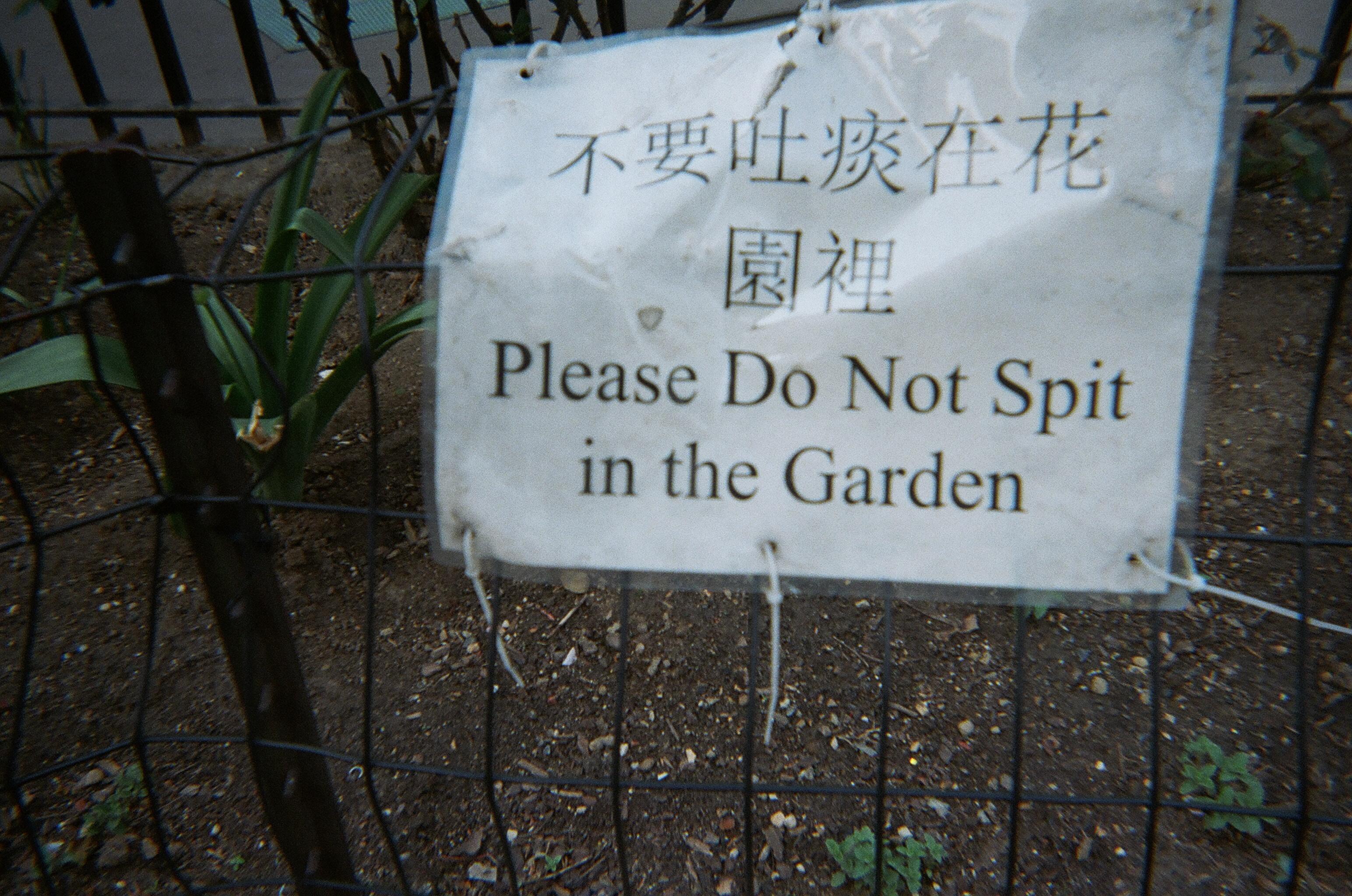 Please Do Not Spit in the Garden